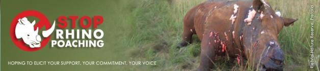 rhino_poaching stop